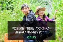 特定技能「農業」の外国人が農業の人手不足を救う?